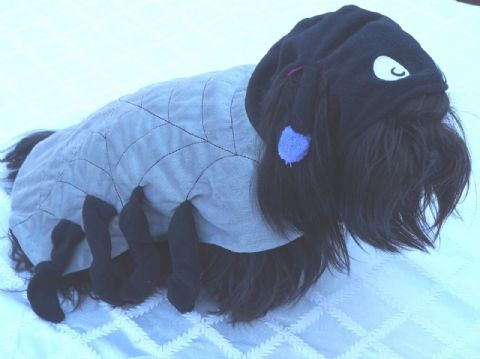 "HALLOWEEN DOG SPIDER COSTUME DOG FANCY DRESS SIZE 14-16"" SOFT WARM COAT & HOOD"